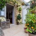 Télikert növényekkel